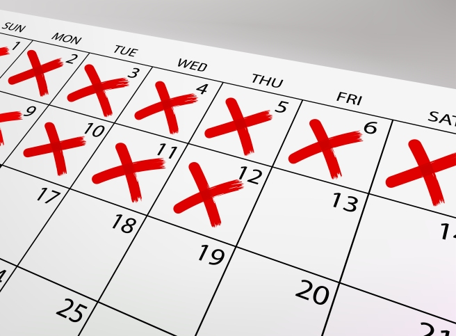 Vector calendar